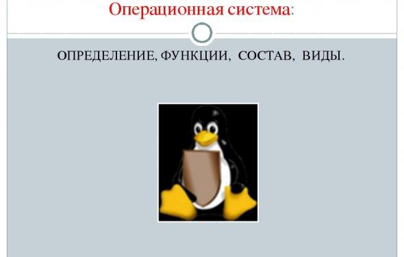 Операционная система: