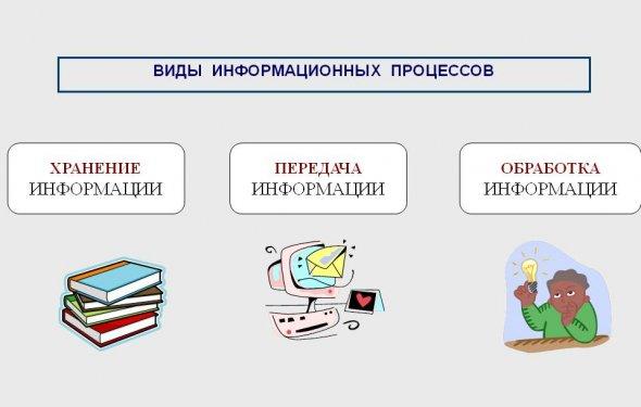 Виды информационных процессов